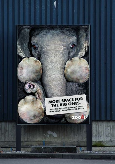 Heartbreaking Public Ads on Animal Cruelty   Earthly Mission