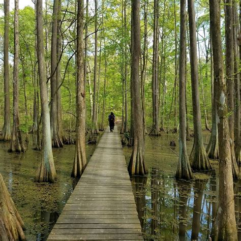 7 Of The Greatest Hiking Trails On Earth Are Right Here In