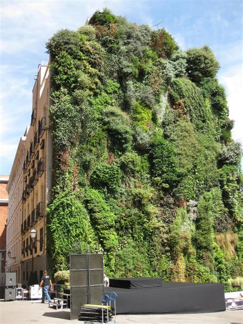 Vertical Gardening Grows Up in Small Spaces - Green Living